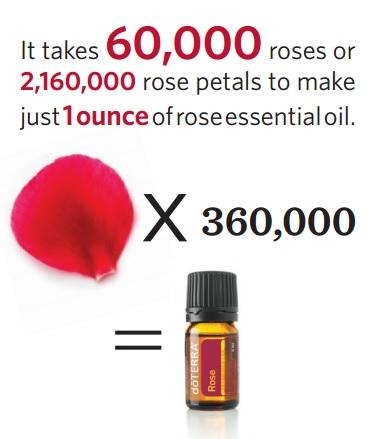 360,000 Petals